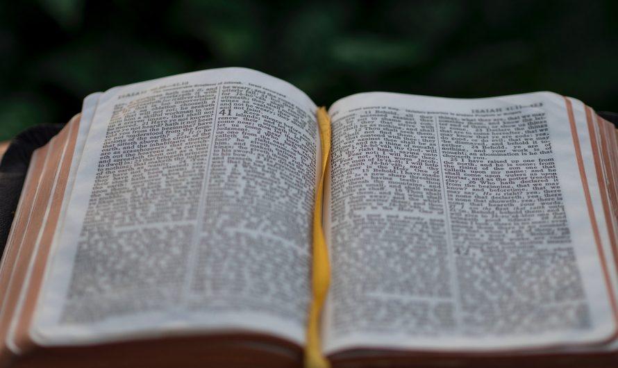 Библия / Евангелие от Иоанна – Оглавление